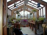 Interior of coastal greenhouse