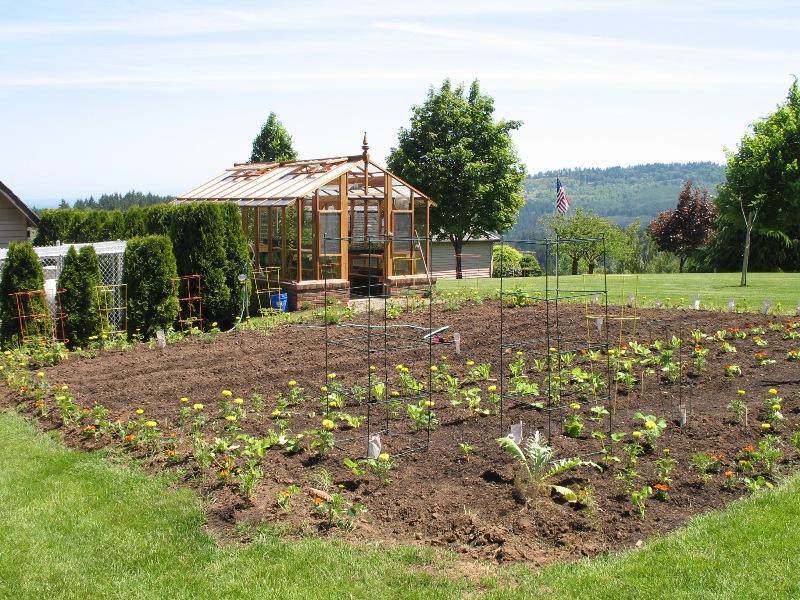 Tall garden greenhouse