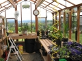 Interior of tall redwood & glass greenhouse