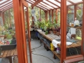 Interior of Salinas CA redwood greenhouse