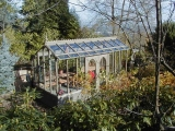tall glass greenhouse stained gray