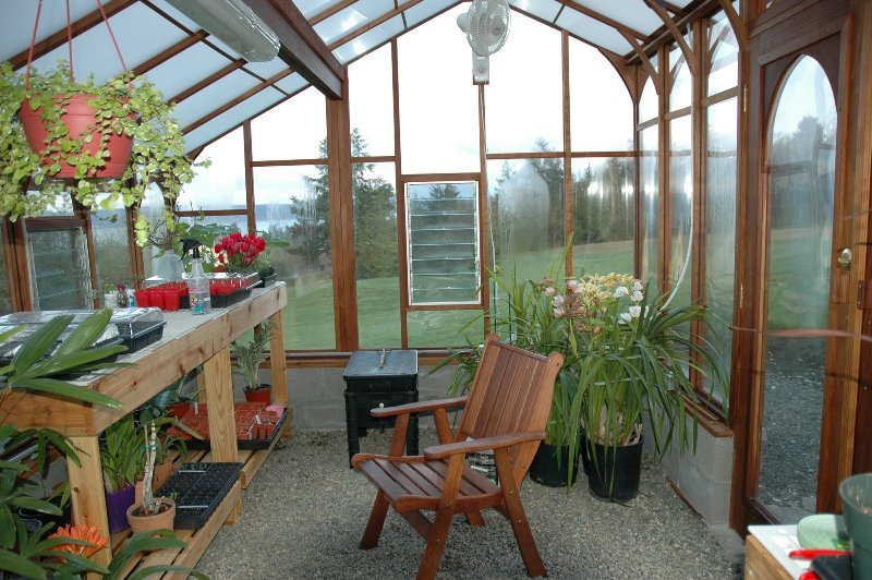 Orchid Greenhouse Ideas