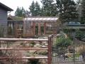 Tall garden greenhouse on Vashon Island WA