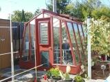 Pineapple growing greenhouse