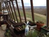 Redwood greenhouse in Indiana - interior