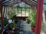 garden greenhouse interior
