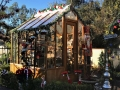 Trillium greenhouse in Christmas theme