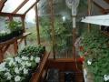 7 x 9 Trillium greenhouse interior