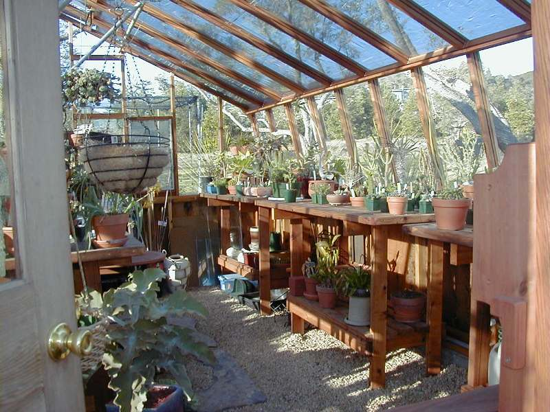 Interior Of 16x18 Tropic Redwood Greenhouse