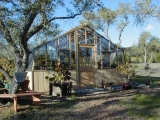 16ft wide redwood and glass greenhouse