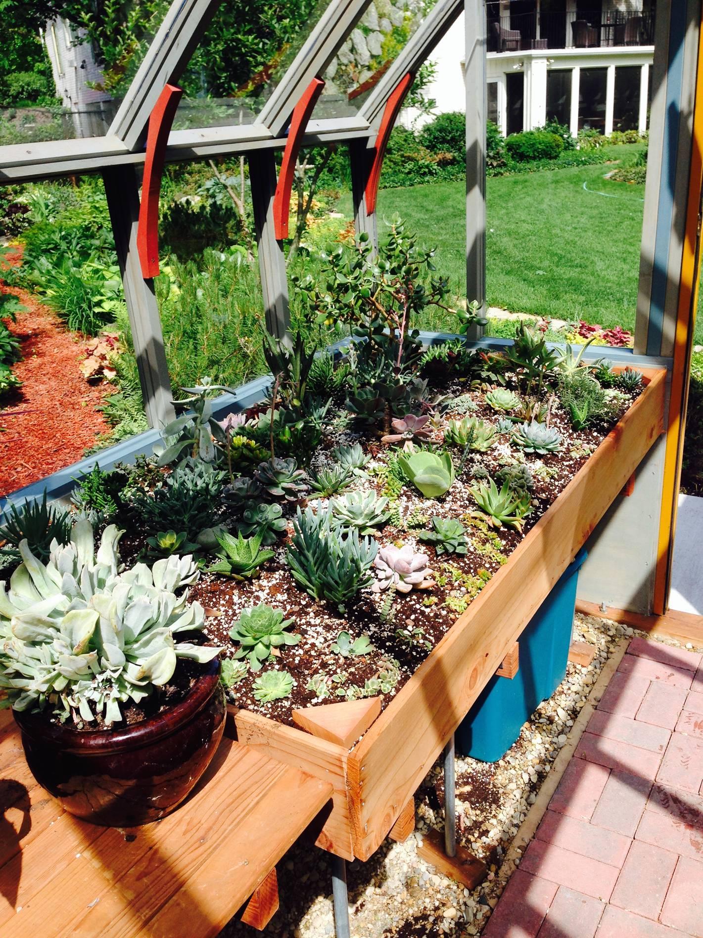 Soil greenhouse bench in Tudor Greenhouse