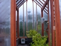 Lemon trees in a redwood greenhouse