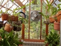 Interior of orchid garden greenhouse