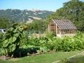 Tudor greenhouse in Beautiful Napa Valley