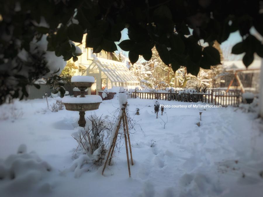 10 x 16 Tudor Greenhouse in snowy Portland, Oregon