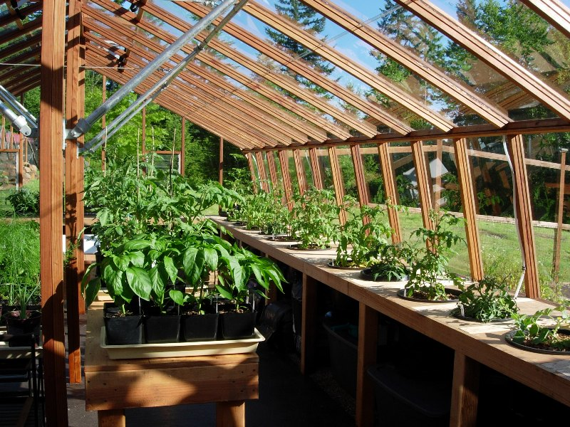Interior of the large greenhouse with the stone base