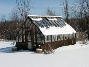 Tudor Winter Greenhouse 12x20