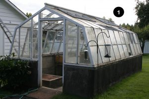 Greenhouse needing replacement