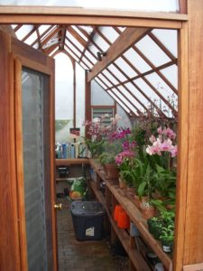 Greenhouse interior with twin wall