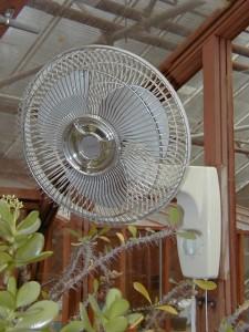 Oscillating fan -greenhouse accessories
